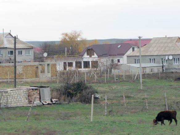 Недвижимость в Ближнем