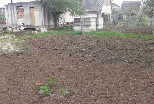 г. Феодосия, Виноградная ул, дача, 100 кв м, 6 сот, Продажа