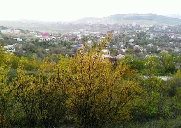 г. Феодосия, Энтузиаст СПК, участок, 3 сот, Продажа