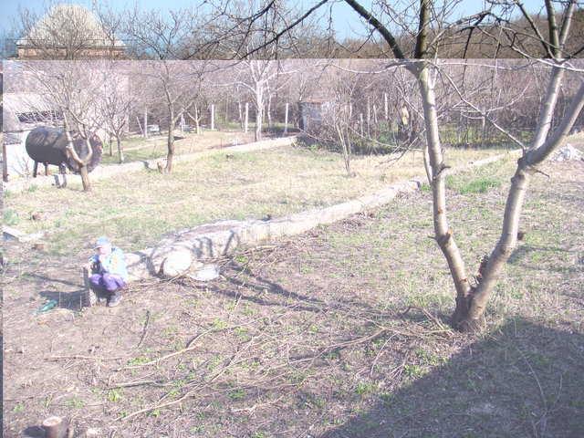 г Феодосия, СПК Энергетик, участок 12 соток, садоводчество