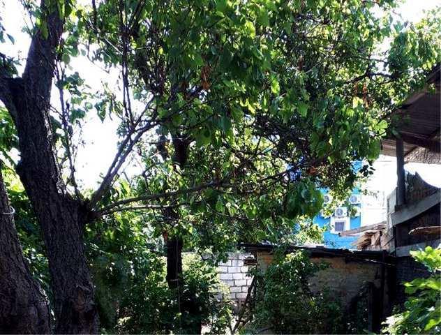 пос. Береговое, Десантников ул, дом, 44 кв м, 6.5 сот, Продажа
